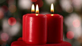 Christmas tree and candles - refocusing stock video