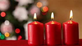 Christmas tree and candles - refocusing stock footage