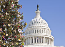 Christmas Tree at the Capitol Building Royalty Free Stock Images