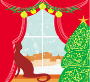 Christmas tree and cat at window Stock Images