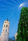 Christmas tree and Cathedral bell tower Vilnius Advent in evening Stock Image