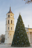 Christmas tree at the Cathedral of Vilnius Stock Images