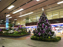 Christmas Tree In Changi Airport Stock Image
