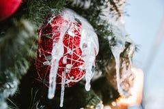 Christmas tree with Christmas ball , Christmas and New Year holiday background stock photography
