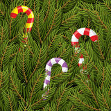 Christmas tree and Christmas Peppermint lollipop Stock Images
