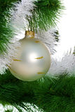 Christmas tree with christmas sphere Stock Photo