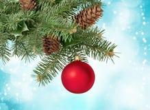 Christmas tree. Christmas christmas ornament frame pine cone fir tree decoration Royalty Free Stock Photos