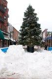 Christmas tree on Church Street, Burlington, Vermont Royalty Free Stock Photo