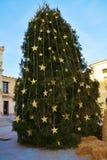 Christmas tree, in Cima Square, in Conegliano Veneto, Italy, details. Beautiful Christmas tree, in Cima square, in Conegliano Veneto, Treviso, in Veneto, Italy Royalty Free Stock Photos