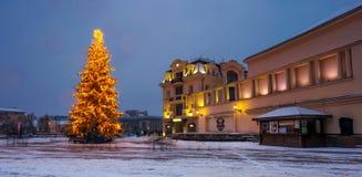 Christmas tree in the city center. Lovely postcard of Uzhgorod, Ukraine Stock Images