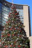 Christmas tree at city hall toronto Royalty Free Stock Photography
