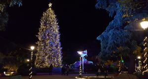 Christmas Tree on a city park in Katerini royalty free stock photo