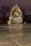 Christmas tree in city park at night Royalty Free Stock Photos
