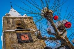 Christmas tree and clock tower Royalty Free Stock Photos
