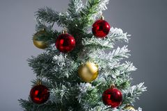Christmas tree close up. In studio royalty free stock image