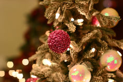 Christmas tree closeup Stock Images