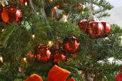 Christmas Tree Closeup. Christmas Tree with red decorations, ribons and tinsel Royalty Free Stock Images
