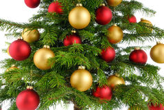 Christmas tree closeup stock image