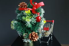 Christmas tree, coins in mini trolley isolated in dark black background. Mini Christmas tree decoration and coins in mini trolley in dark black background Stock Images