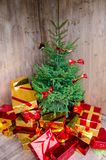 Christmas tree. With colorful presents Stock Photography
