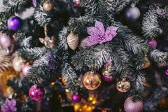 Green Christmas tree with colorful toys. Christmas tree with colorful toys royalty free stock photos