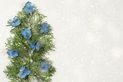 Christmas tree composition blue hydrangea royalty free stock image