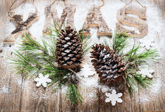 Christmas tree with cones and snow Stock Image
