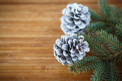Christmas tree with cones Royalty Free Stock Photos