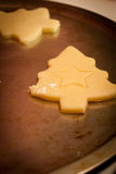 Christmas Tree Cookies. Christmas Tree shaped sugar cookies on a pan waiting to be baked Royalty Free Stock Photos