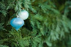 Christmas tree copyspace royalty free stock images