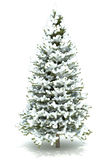 Christmas tree covered with snow Royalty Free Stock Image
