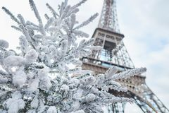 Christmas tree covered with snow near the Eiffel tower Stock Photography