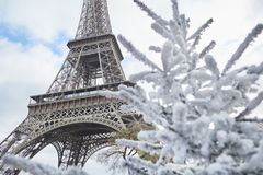Christmas tree covered with snow near the Eiffel tower Royalty Free Stock Image