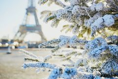 Christmas tree covered with snow near Eiffel tower. Christmas tree covered with snow near the Eiffel tower in Paris, France Royalty Free Stock Photo