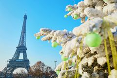 Christmas tree covered with snow near the Eiffel tower in Paris Royalty Free Stock Image