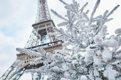 Christmas tree covered with snow near the Eiffel tower. In Paris, France Stock Images