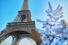 Christmas tree covered with snow near the Eiffel tower in Paris. France Stock Image
