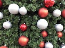 Christmas Tree in Dallas Texas royalty free stock photo