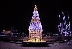 Christmas tree in Danube park ,Novi Sad, Serbia. N2019 years.Holidays. Light at night stock photos