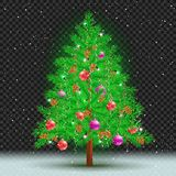 Christmas tree dark transparent background. Christmas tree on transparent background. Spruce fir with toys ribbons cones and lights in branches. Green needles Royalty Free Stock Photo