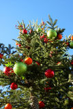 Christmas tree in day light, angle of elevation with blue sky.  Stock Photo