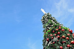 Christmas tree in day time. With blue sky background royalty free stock images