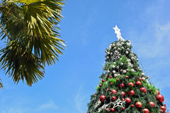 Christmas tree in day time with blue sky background Royalty Free Stock Photos