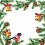 Christmas tree with bullfinches and poinsettia. Christmas decorations. Watercolor. Christmas tree decorated with bells with bullfinches.Watercolor. Green Stock Images