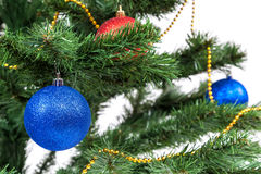 Christmas tree decorated with blue and red balls Stock Images