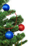 Christmas tree decorated with blue and red balls Royalty Free Stock Images