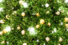 Christmas tree decorated with Christmas gold and silver ball han. Ging on tree with sparkling and twinkling lights in holiday and festive background Royalty Free Stock Photos