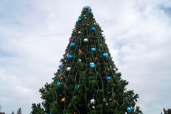 Christmas tree decorated with colorful Christmas balls. On the background of the sky Stock Photography