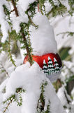 Christmas Tree 1. Christmas tree decorated in the garden Royalty Free Stock Images