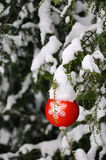 Christmas Tree 2. Christmas tree decorated in the garden Royalty Free Stock Image